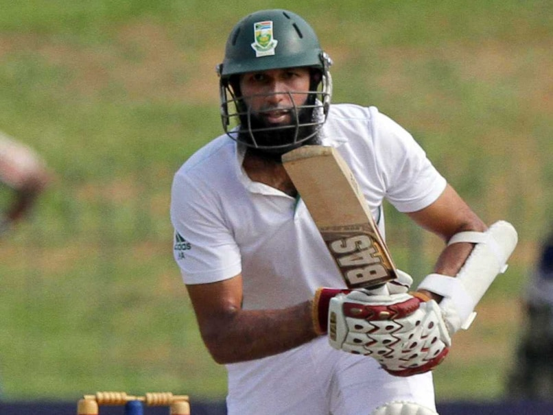 Hashim Amla Leads South Africa Recovery