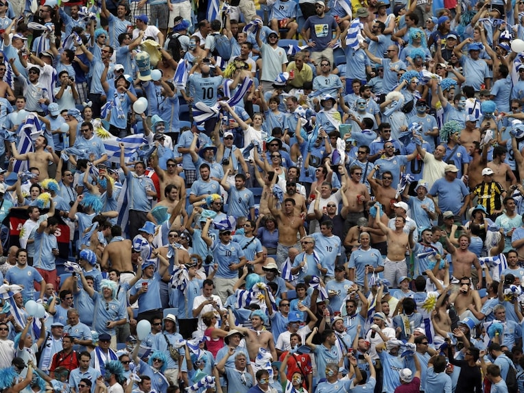 Representational Photo: Fans during FIFA World Cup