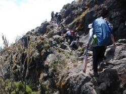 Cricket Teams Trek to World's Highest Game on 'Roof of Africa'