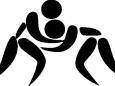 Delhi HC Asks Centre to Give Dronacharya Award to Former Wrestling Coach