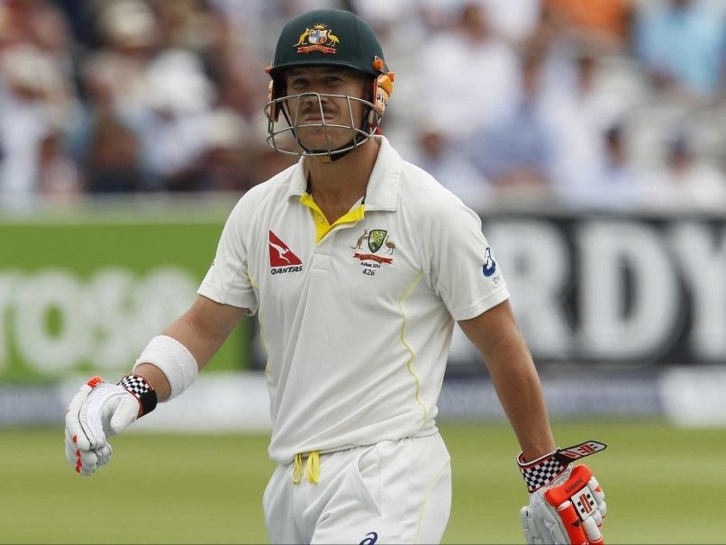 Image result for cricketer warner out in test