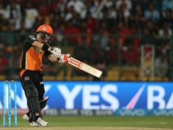 Warner Smashes Fifty, Goes Past 800 Runs In 2016 Indian Premier League