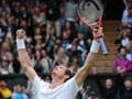 Wimbledon: David Cameron proposes knighthood for Andy Murray