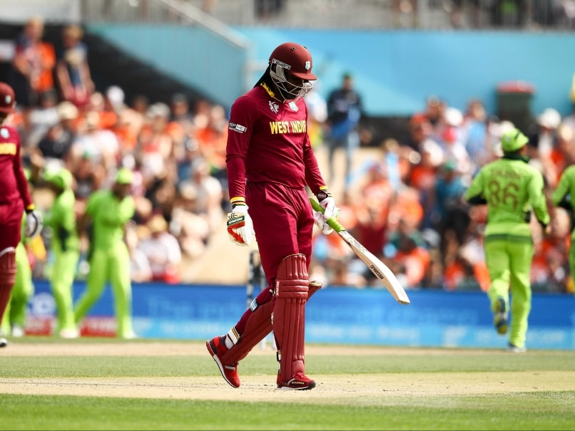 West Indies Chief Blasted for Chris Gayle