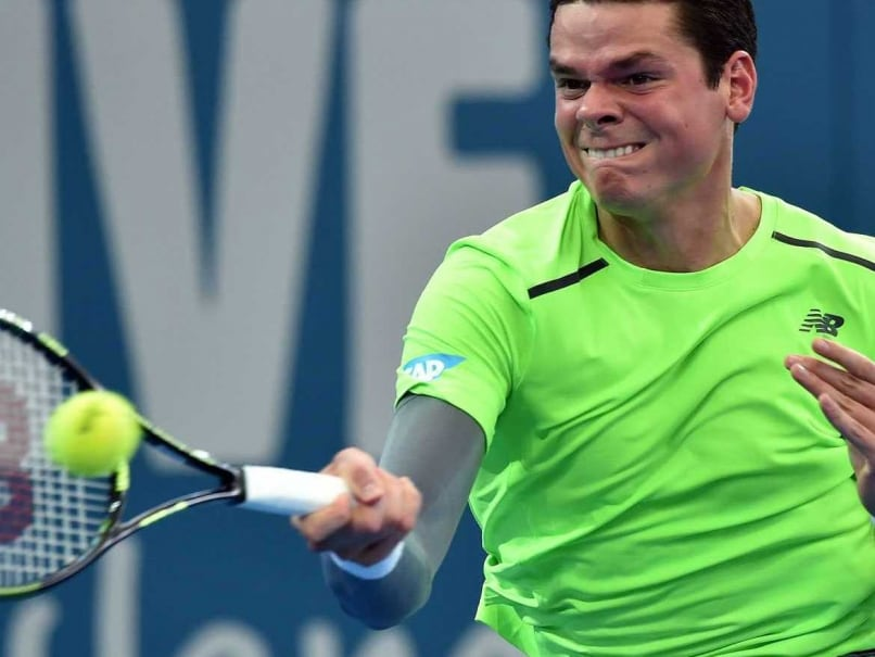 Milas Raonic Faces Roger Federer in Brisbane Final, Poland Win Hopman Cup