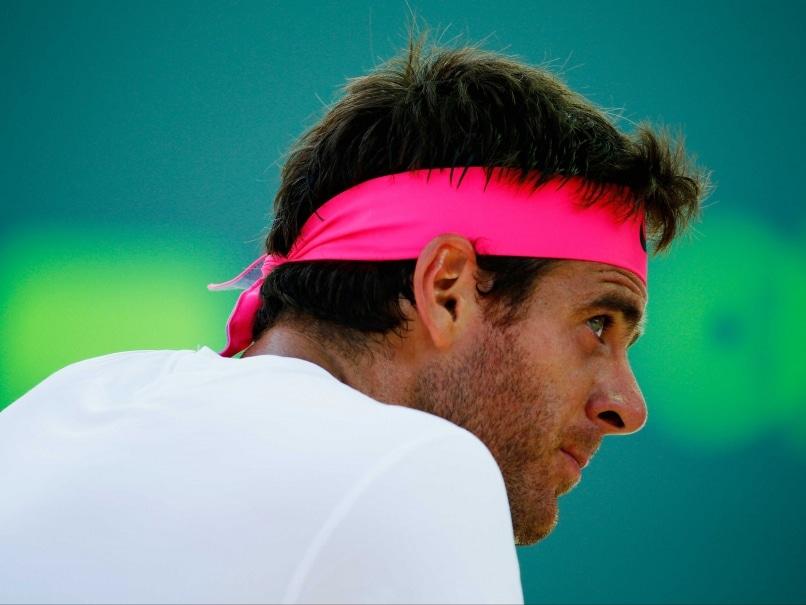 Juan Martin del Potro Powers Into ATP Delray Beach Open Quarter-Finals