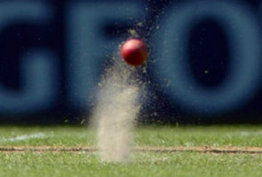 Peta bats against cricket leather balls