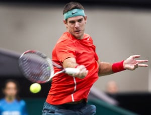Juan Martin Del Potro, Andy Murray progress to round two of ATP event in Rotterdam