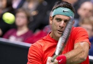 Juan Martin del Potro through to quarterfinals of Rotterdam ATP event