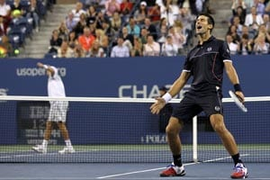Djokovic ends season with record prize money