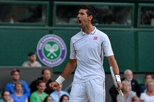 Wimbledon 2013: Top seed Novak Djokovic moves into quarter-finals