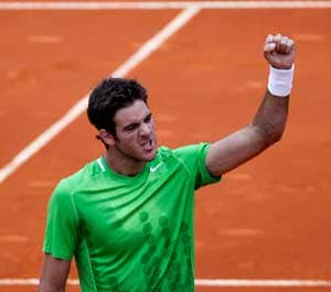 Del Potro ousts top seed Soderling