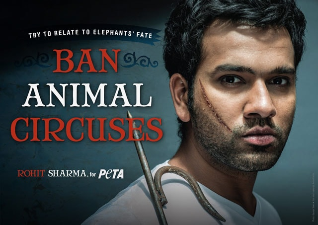 India's batting star Rohit Sharma hits out at animal circuses in new PETA ad