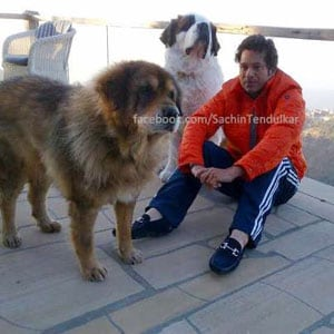 Sachin Tendulkar chills out in Mussoorie with his dogs
