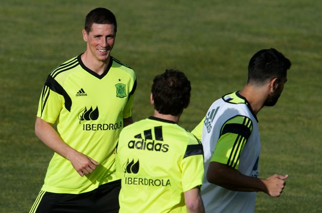 FIFA World Cup: Fernando Torres Gets a Foothold in Spain Squad